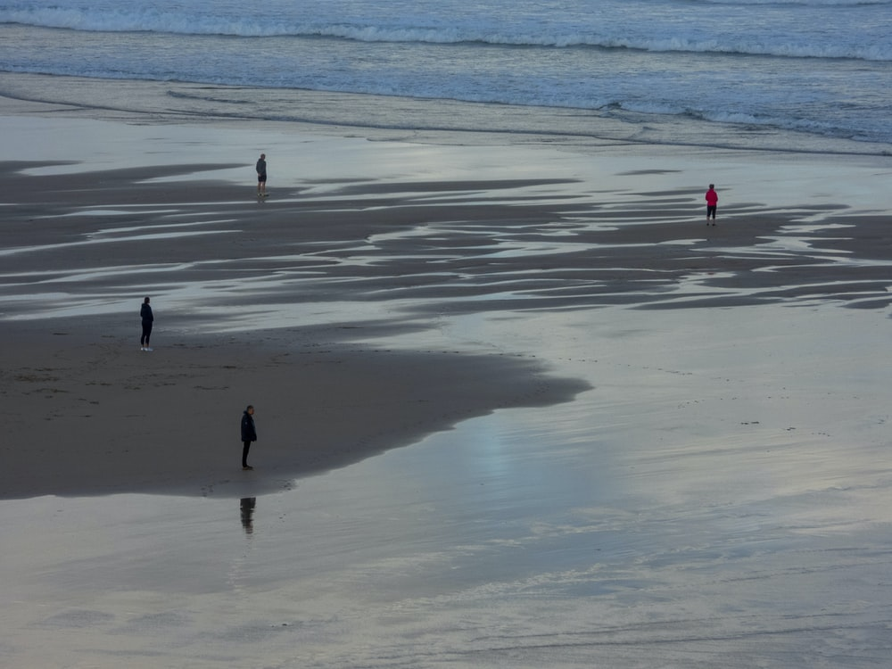 four persons standing on seashore during day