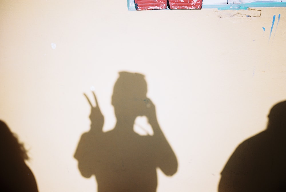 silhouette of person making peace hand sign