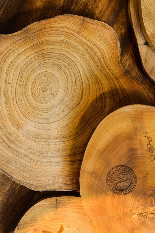 brown drift wood