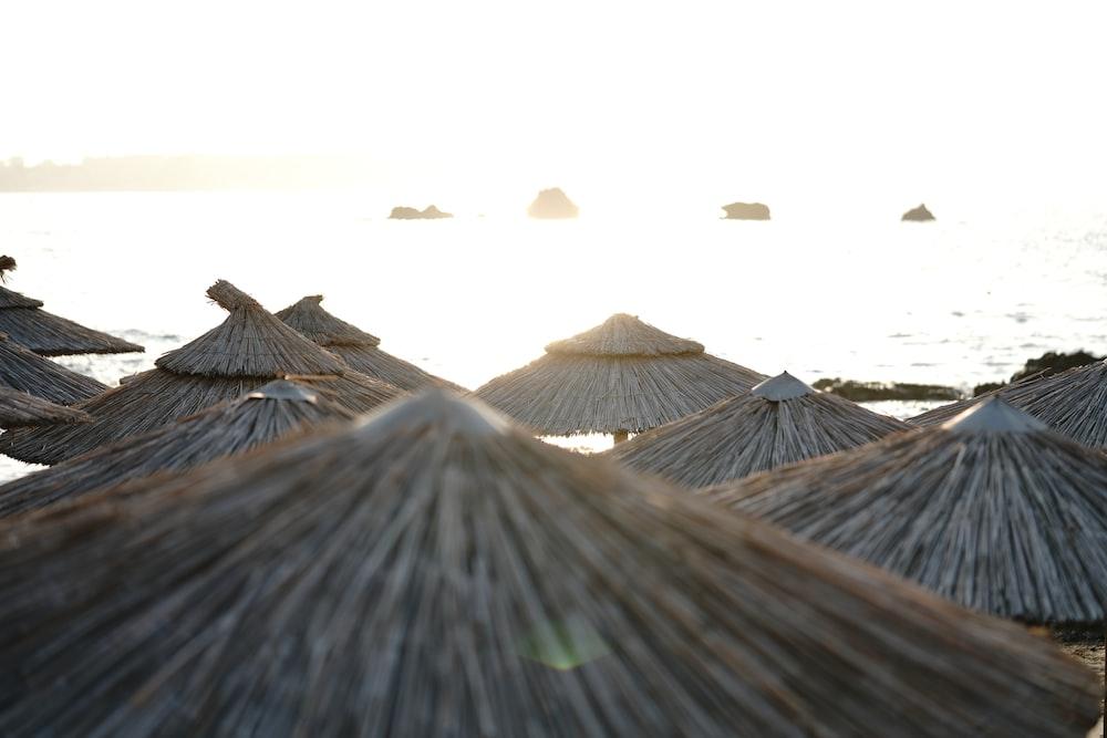 parasols near seahsore