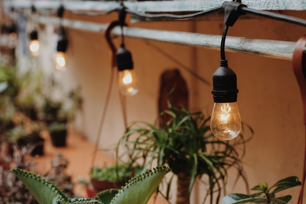 string lights turned on hung on railing above plants