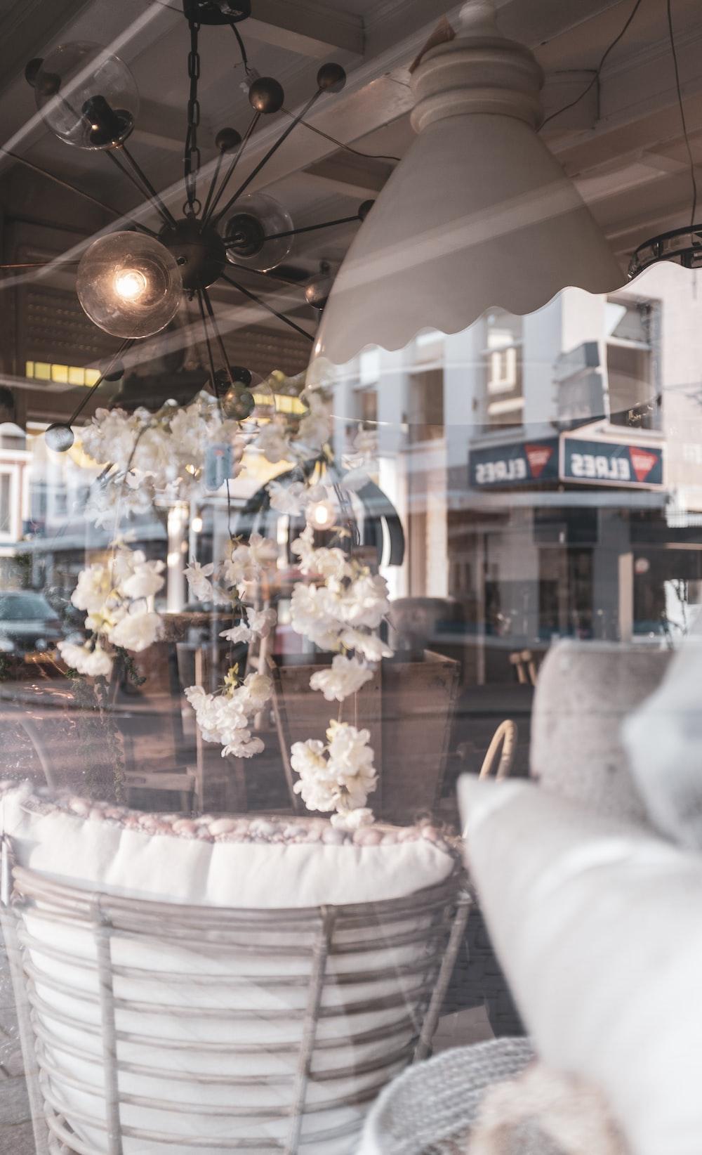 white-petaled flowers decor