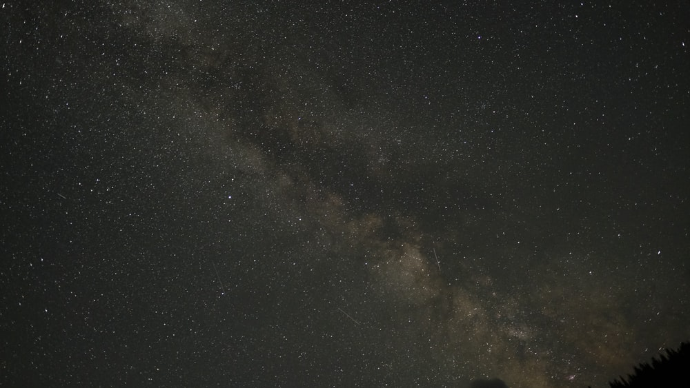 stars on sky at night