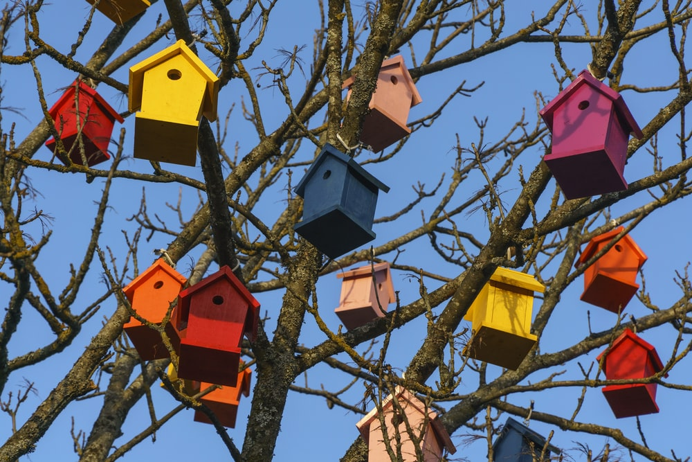 multicolored wooden bird houses on bare tree