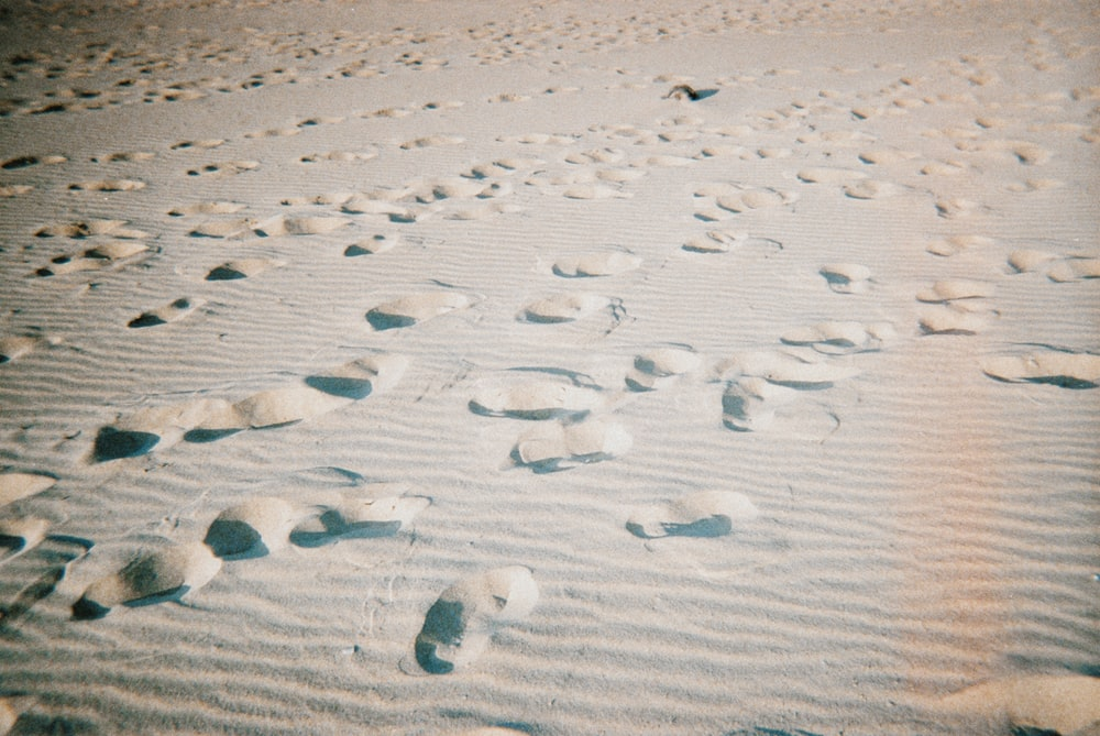 brown sand surface with foot steps
