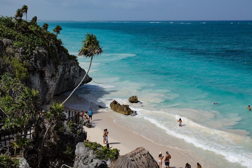 people walking on seashore during daytime