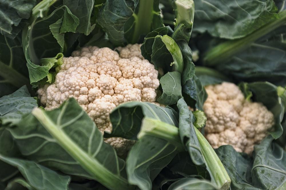 Cauliflower vegetable macro photography