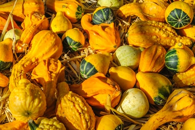 pile of gourds produce teams background