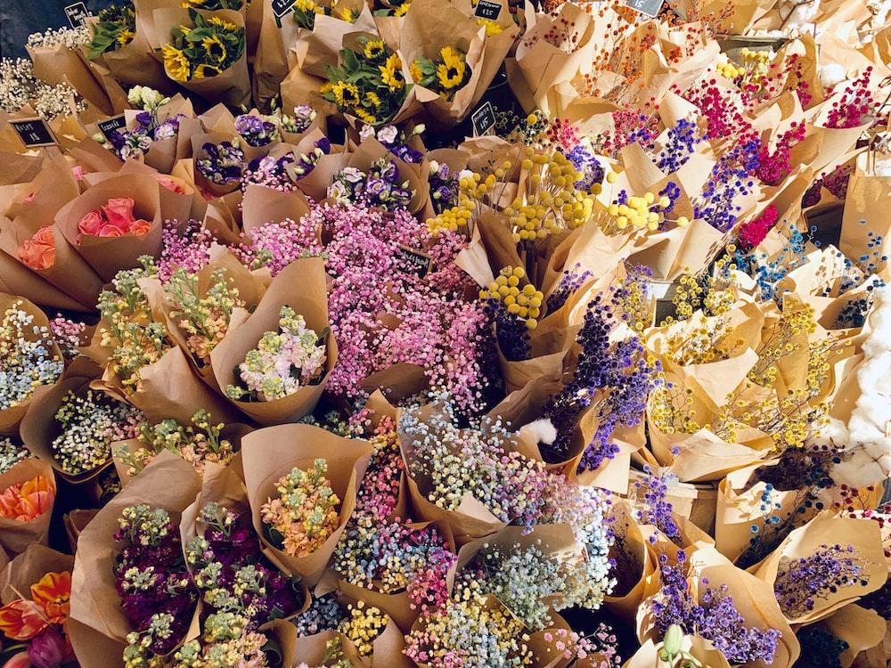 multicolored flower bouquet