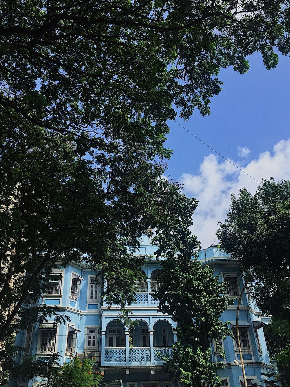 teal building beside tree