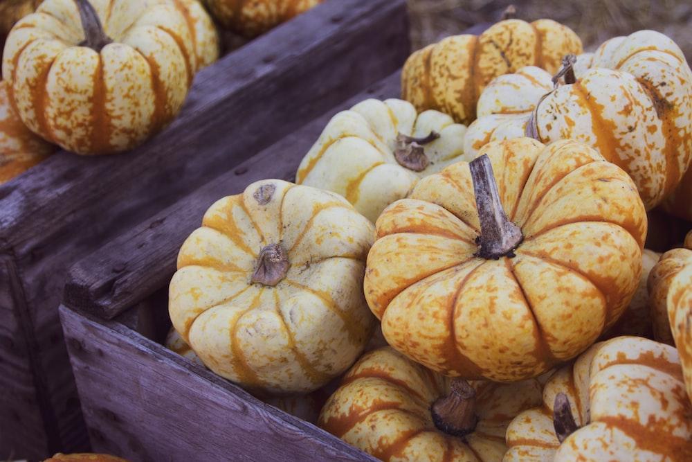 pumpkin lot on brown wooden crates