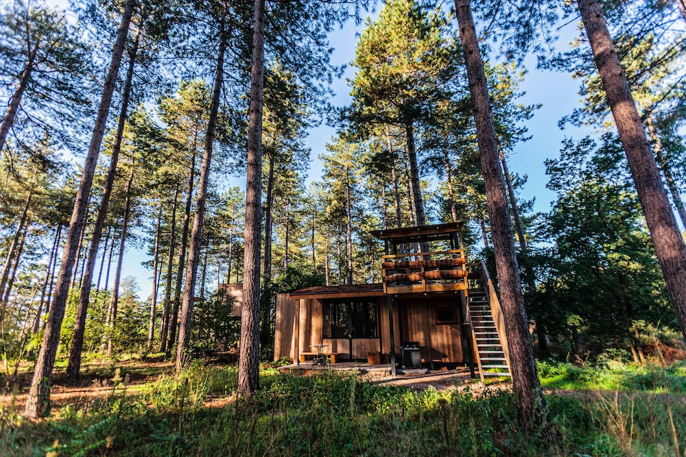 brown wooden house surrounded by trees during daytime