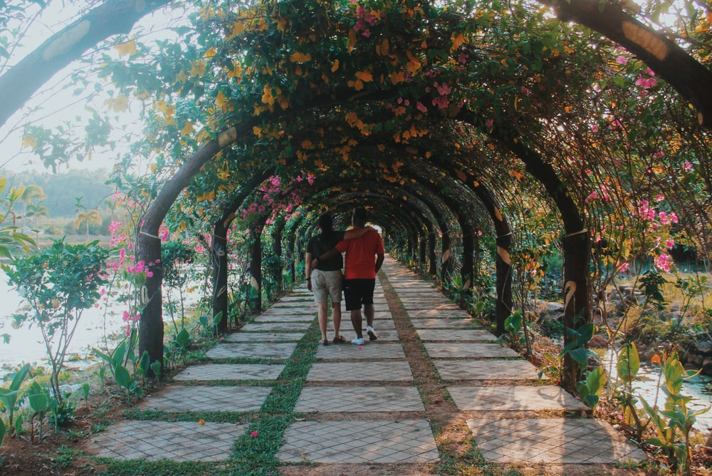 man and woman walking on pathway