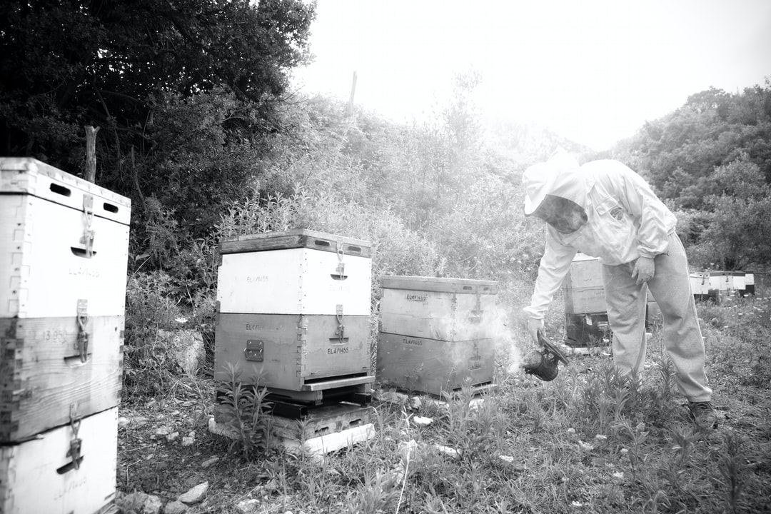 "Giorgos Athanasiadis, enclosing nature. Bee Naturalles Euboea, Greece 🌲 www.beenaturalles.com Bee Naturalles ""Organic Bee Idea"" visualization by Alexis Kamitsos 🐝 Bee Naturalles is an innovative Greek brand that provides natural/organic edible & skin care solutions, enclosing the beneficial & the healing intelligence of nature & the honey bee. 🌼 Our products are a mix of unprocessed natural ingredients, such as organic beekeeping products, plant & herbal extracts, & essential oils produced with truly mild & respectful to nature techniques, designed to improve well-beeing."