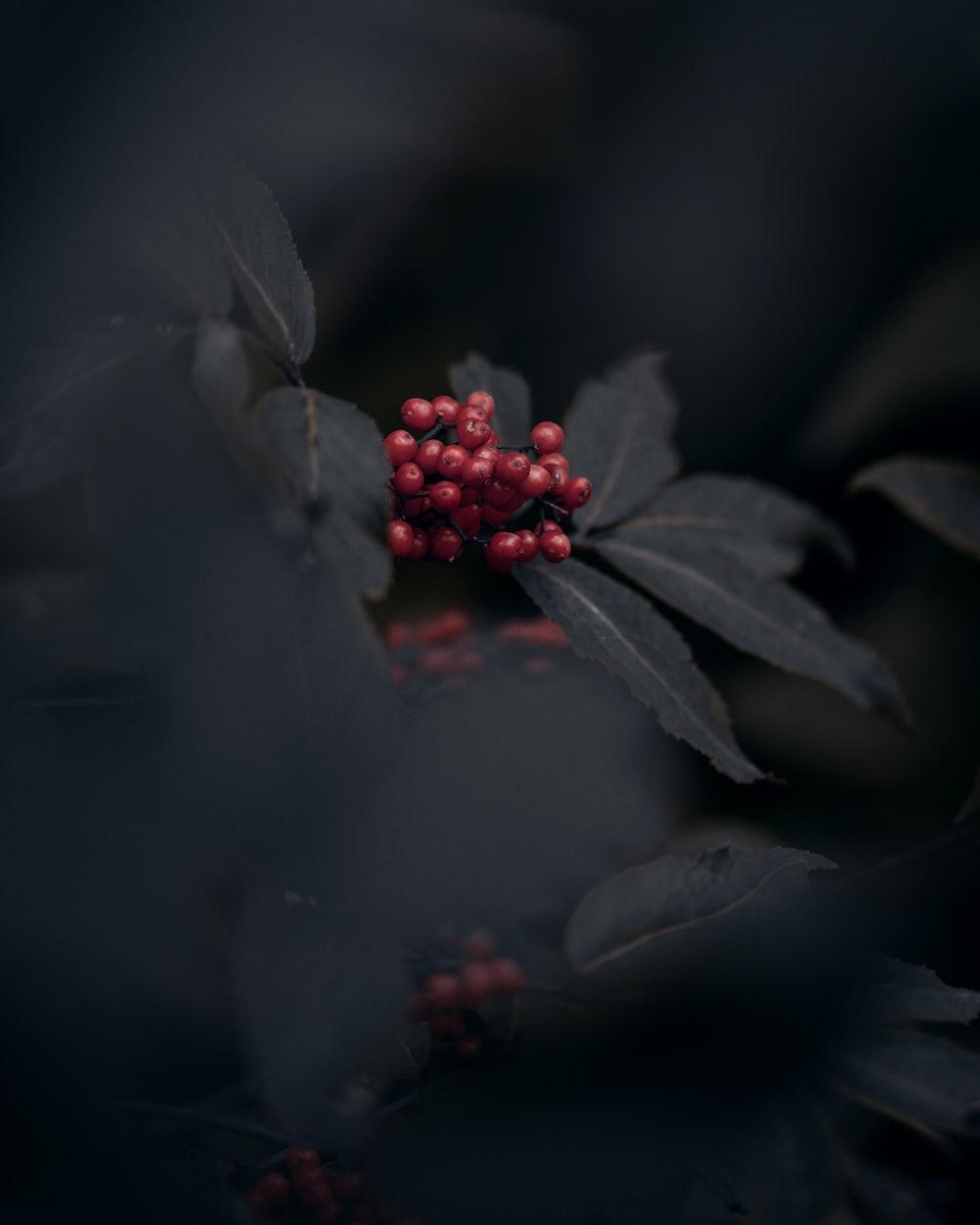 View the photo by Kirill Pershin