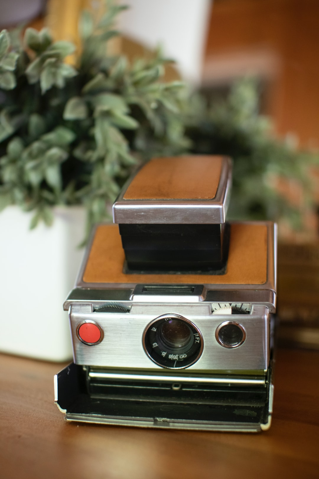 Vintage Polaroid SX-70 retro camera with supple brown cow hide and chrome metal details sits atop a wooden table, next to a potted green plant.