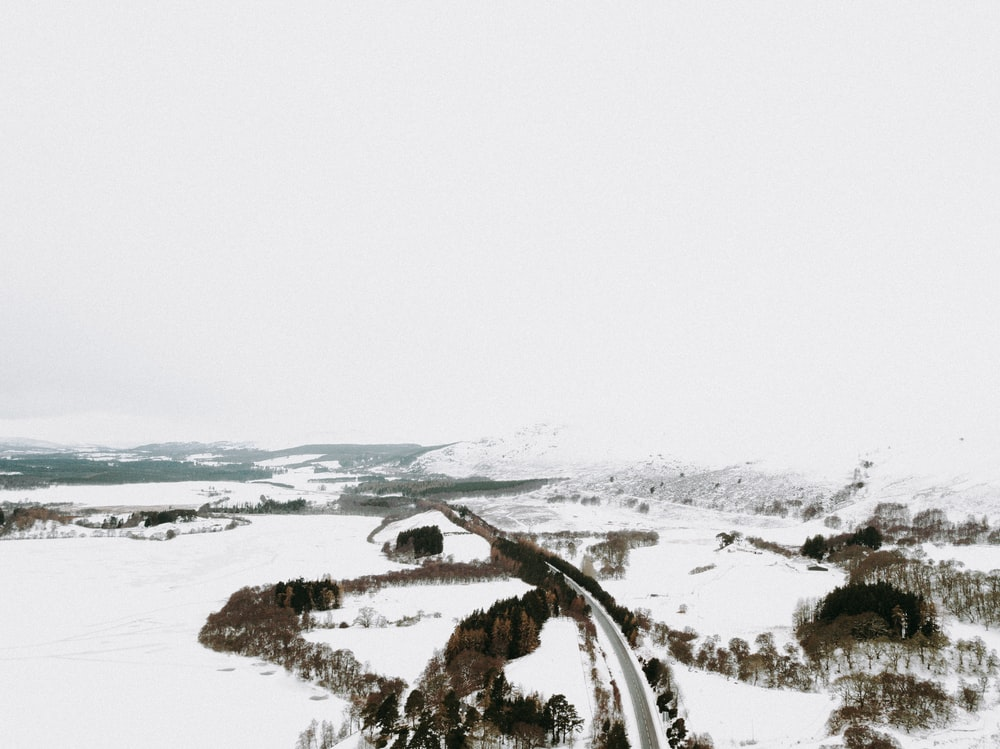 aerial photography of roadway
