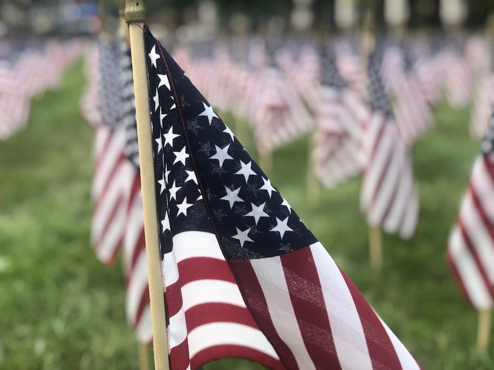 macro photography of U.S.A flag lot waving