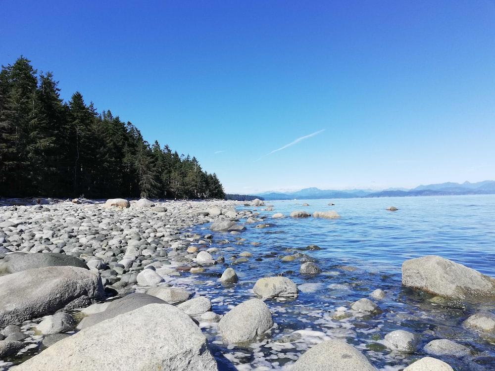 crystal blue river beside stones