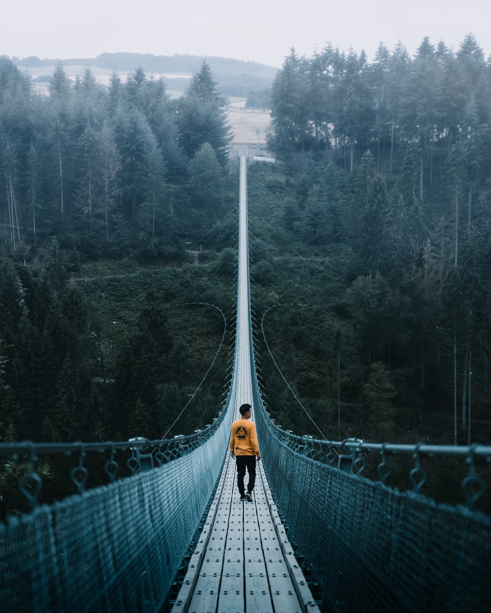 person on hanging bridge