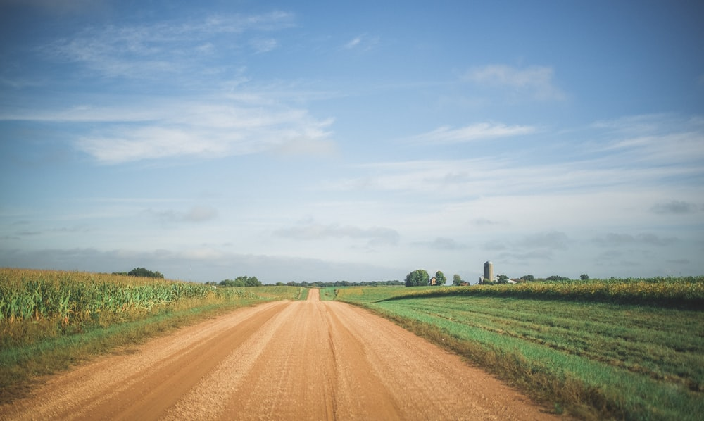 green field with road