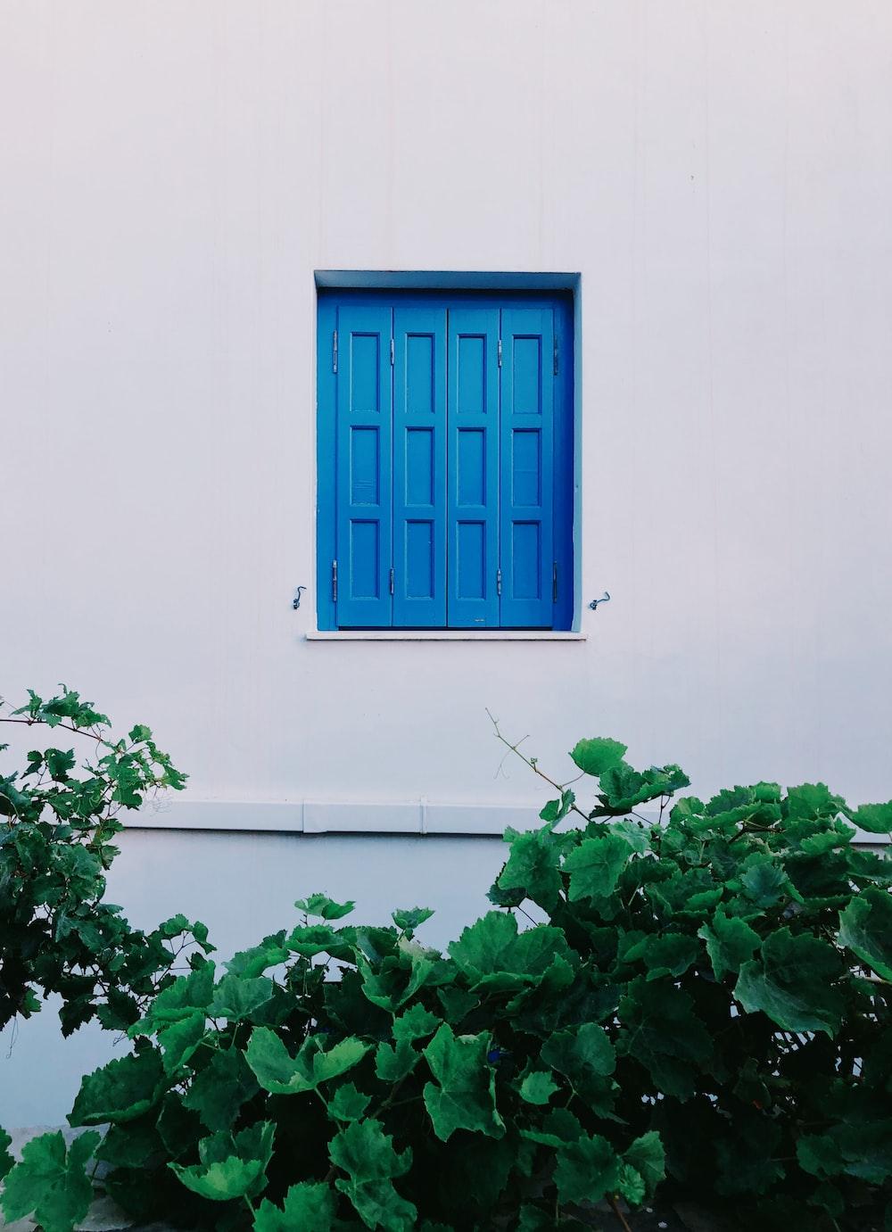 blue wooden panel window pane