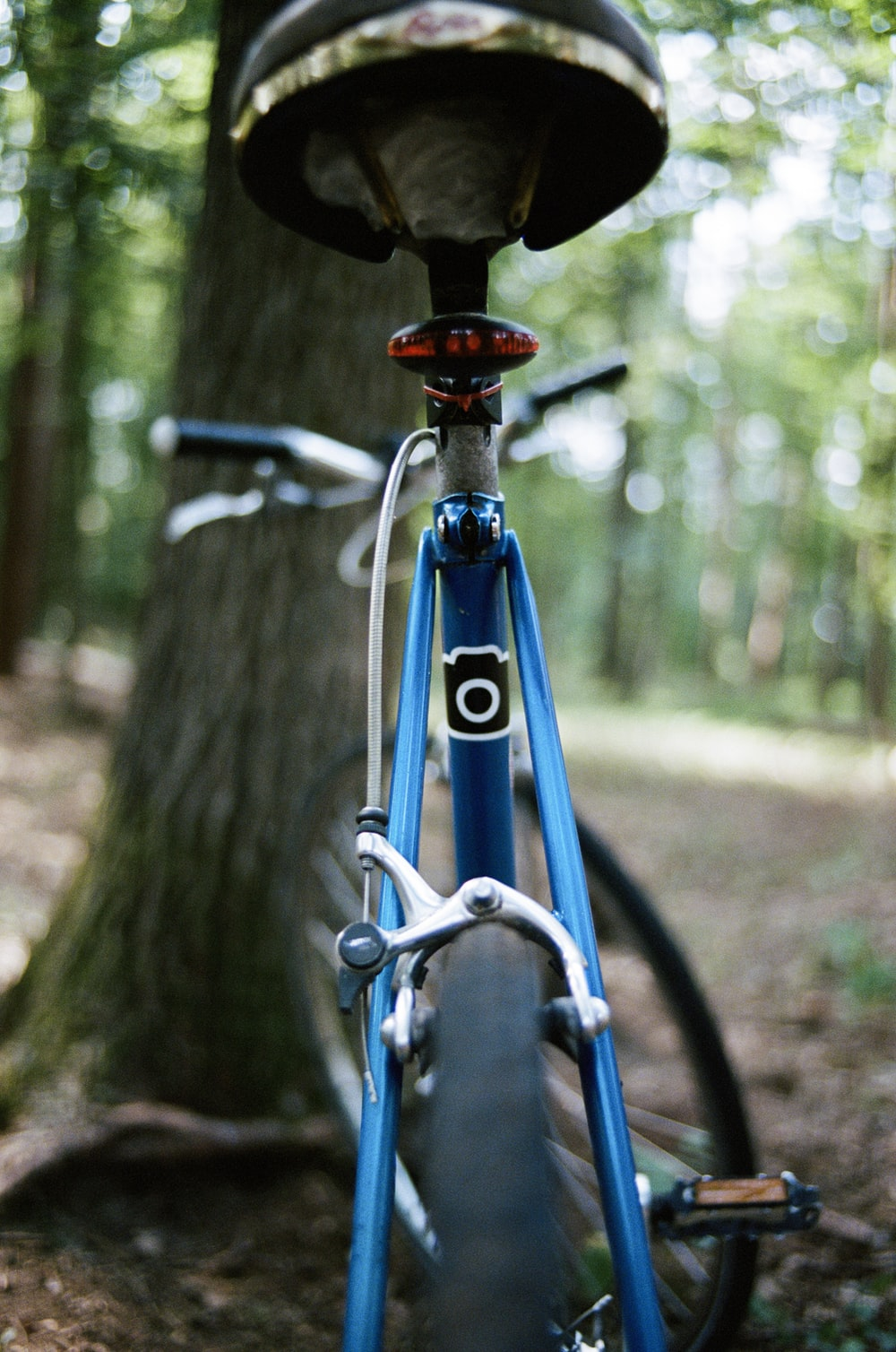 blue bicycle parked near tree
