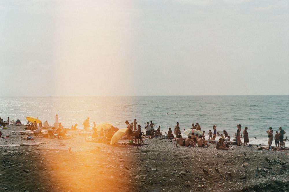 people sitting and walking on seashore during daytime