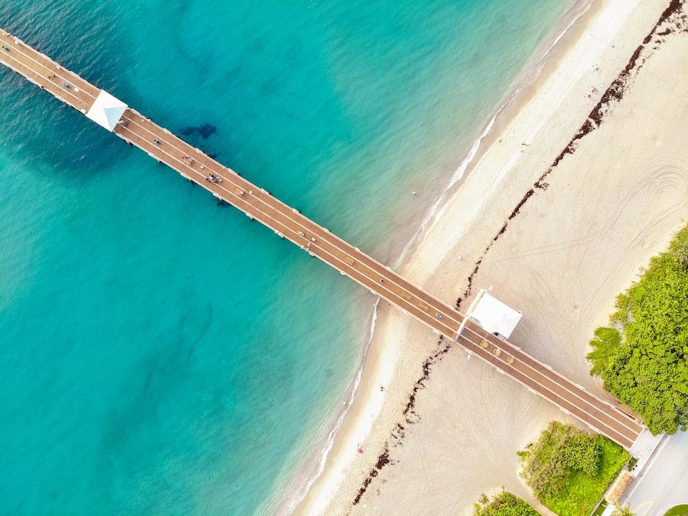 brown dock on beach