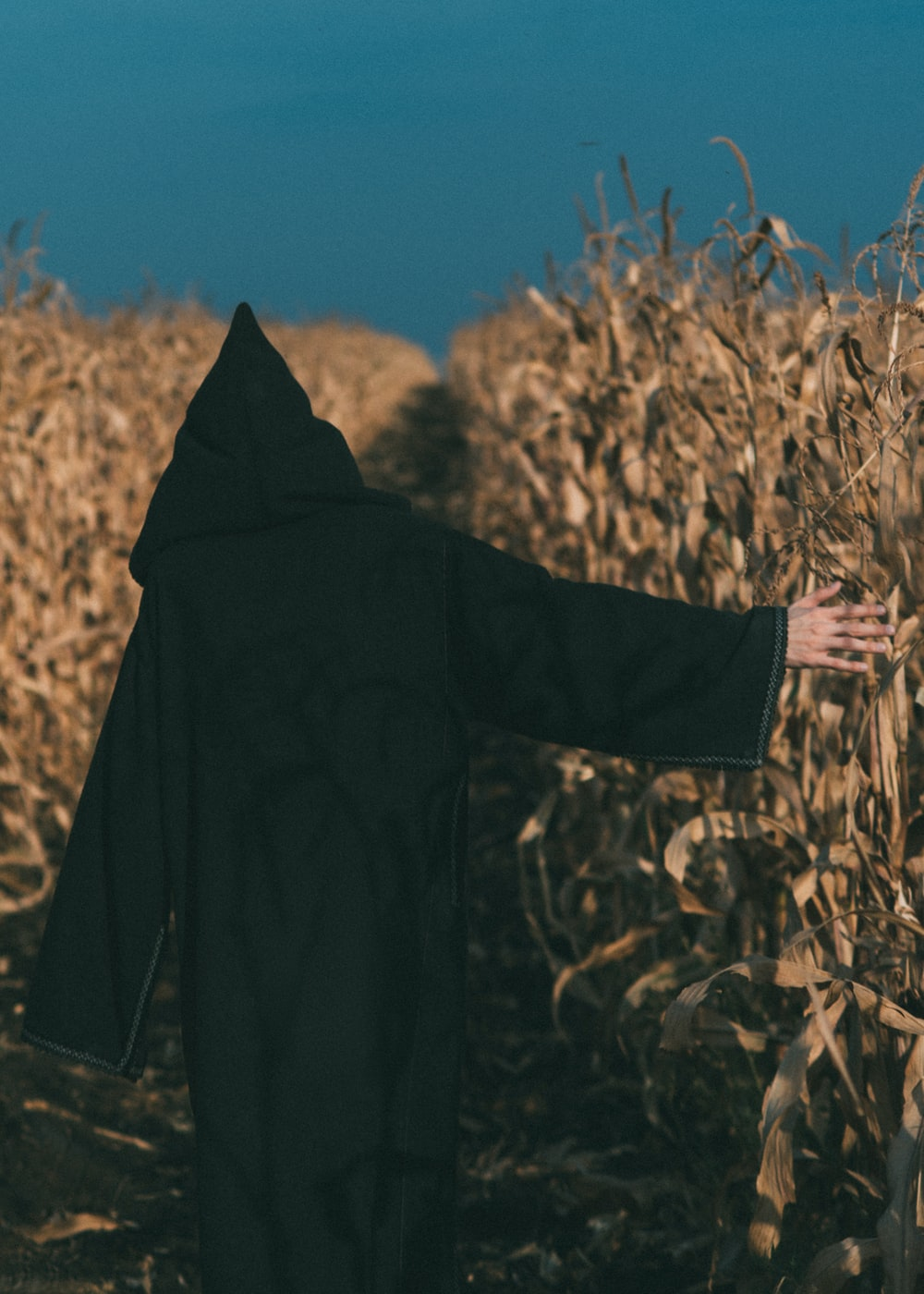 person wearing black coat standing in corn field during daytime