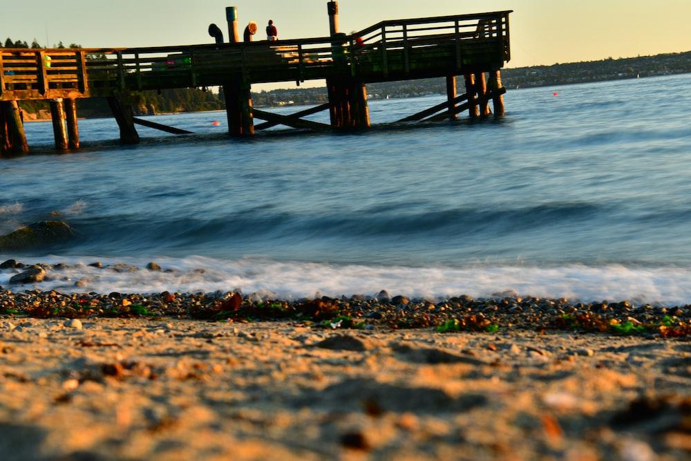 shoreline and ocean water