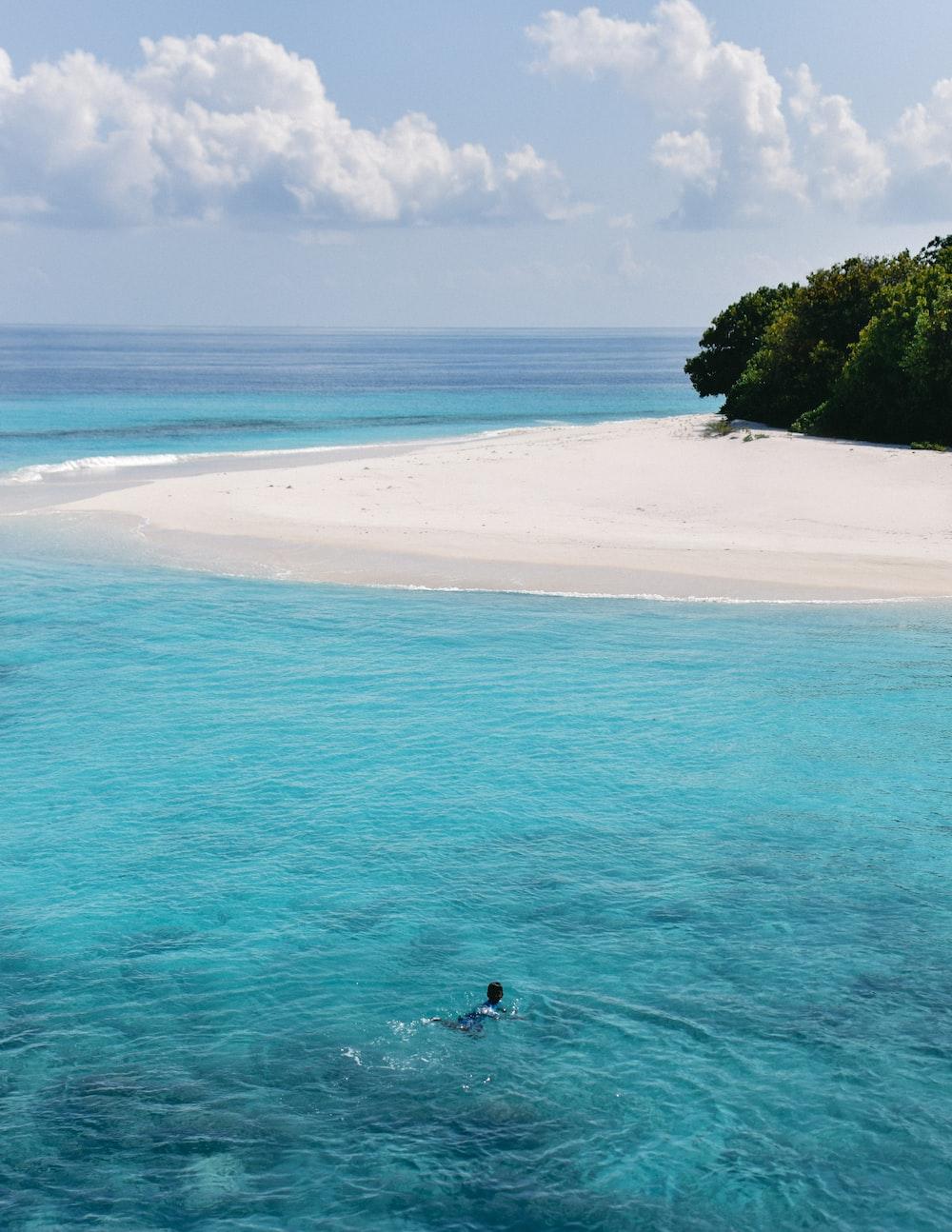 photo of seashore island scenery