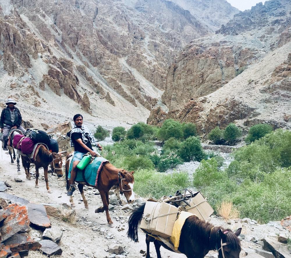 man wearing black shirt riding brown horse