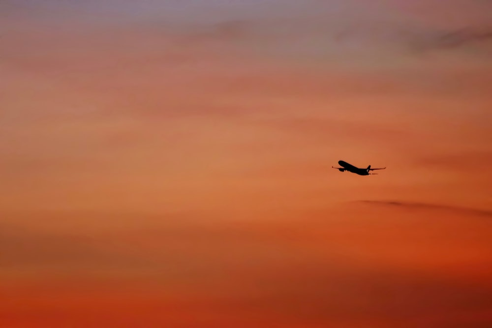 plane in mid air during golden hour