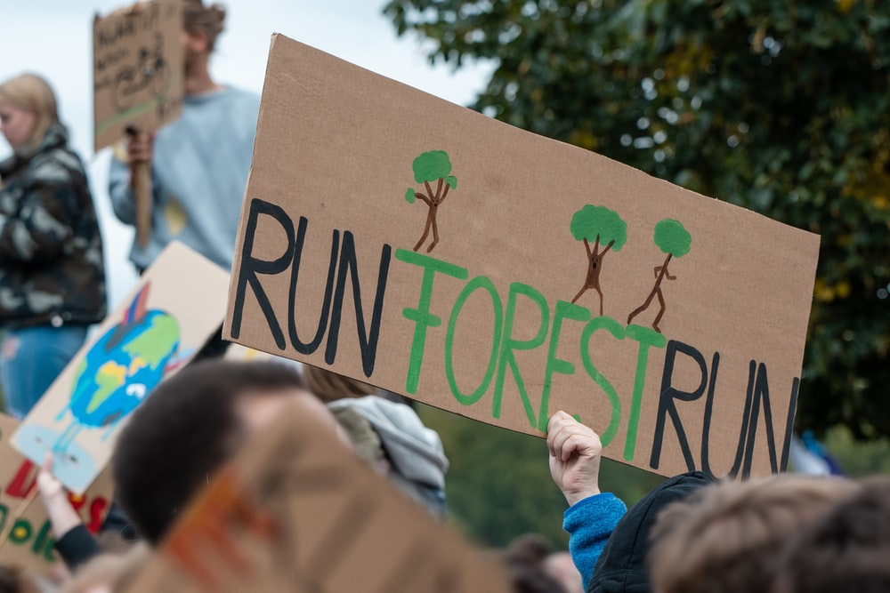 person holding up run forest run sign