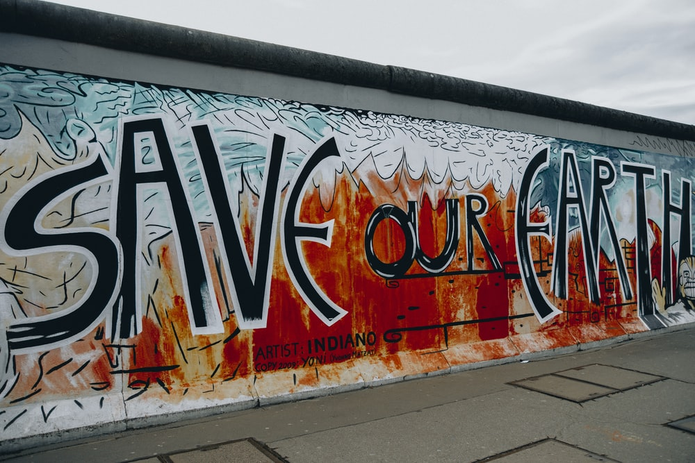 save our eart wall mural