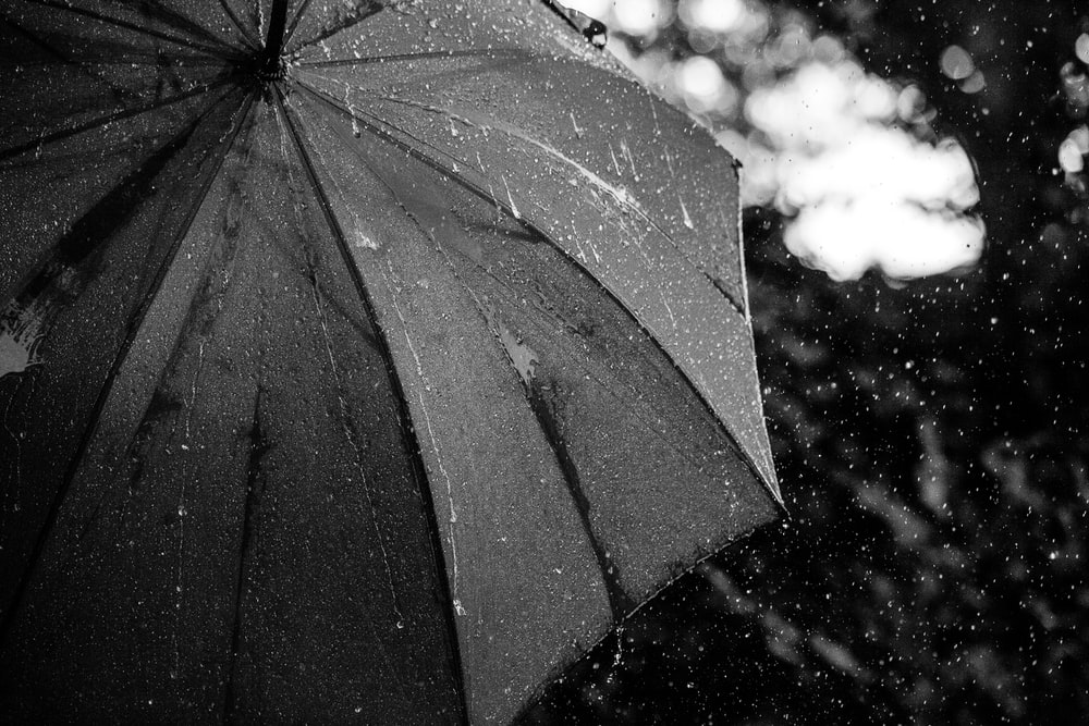 grayscale photography of umbrella