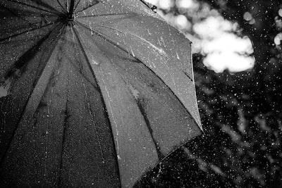 grayscale photography of umbrella umbrella teams background