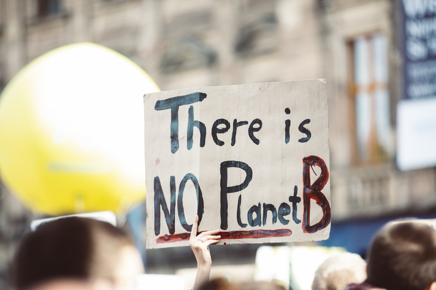 """""""There is NO Planet B"""" Plakat auf einer Klimademo"""