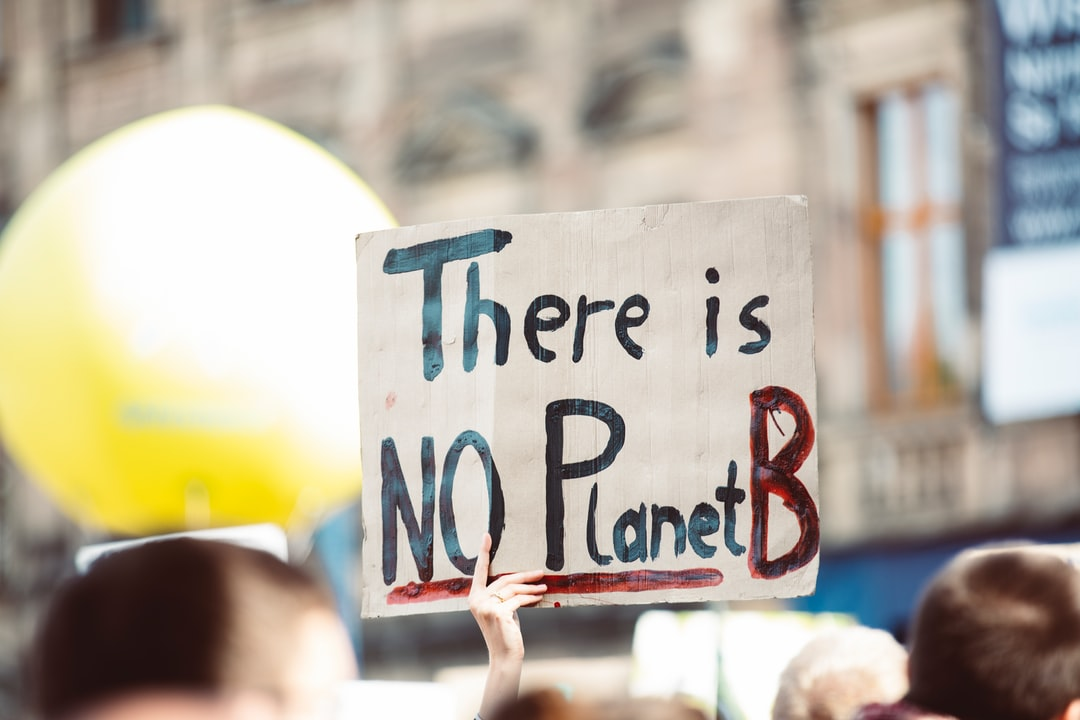 THERE IS NO PLANTE B. Global climate change strike - No Planet B - Global Climate Strike 09-20-2019