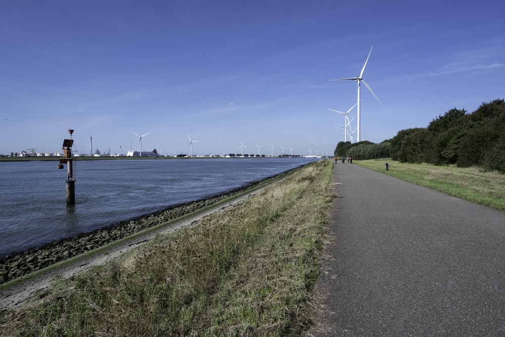 wind turbines near body of water