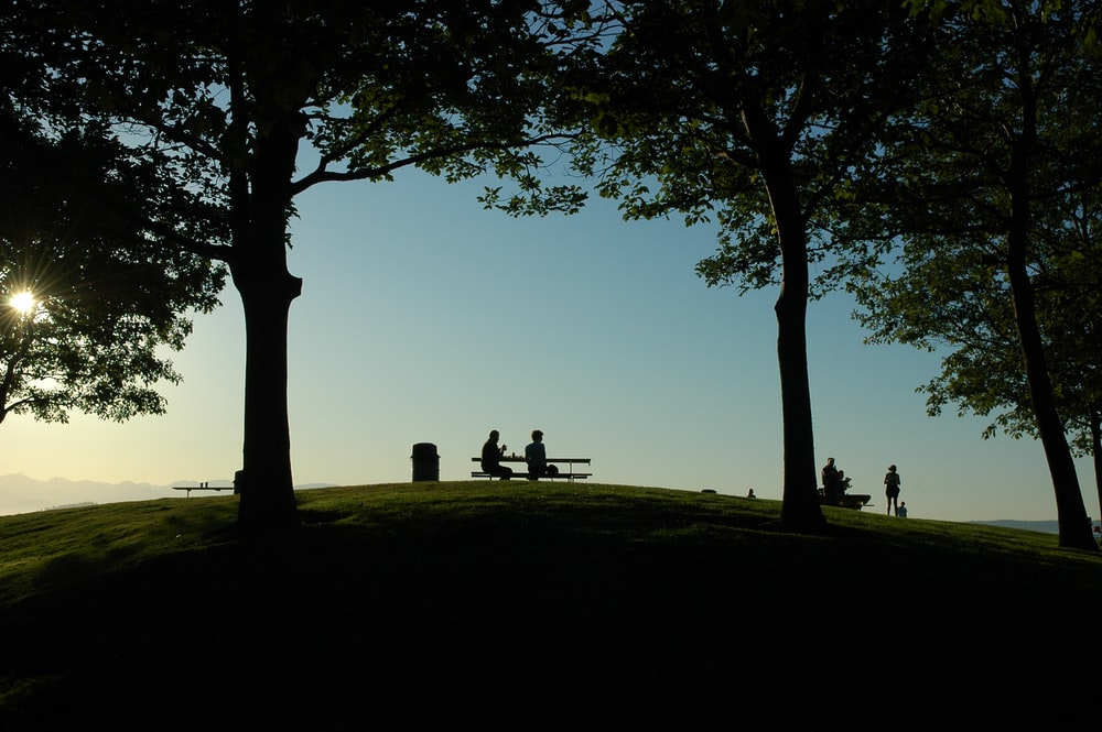 silhouette of person sitting on bench
