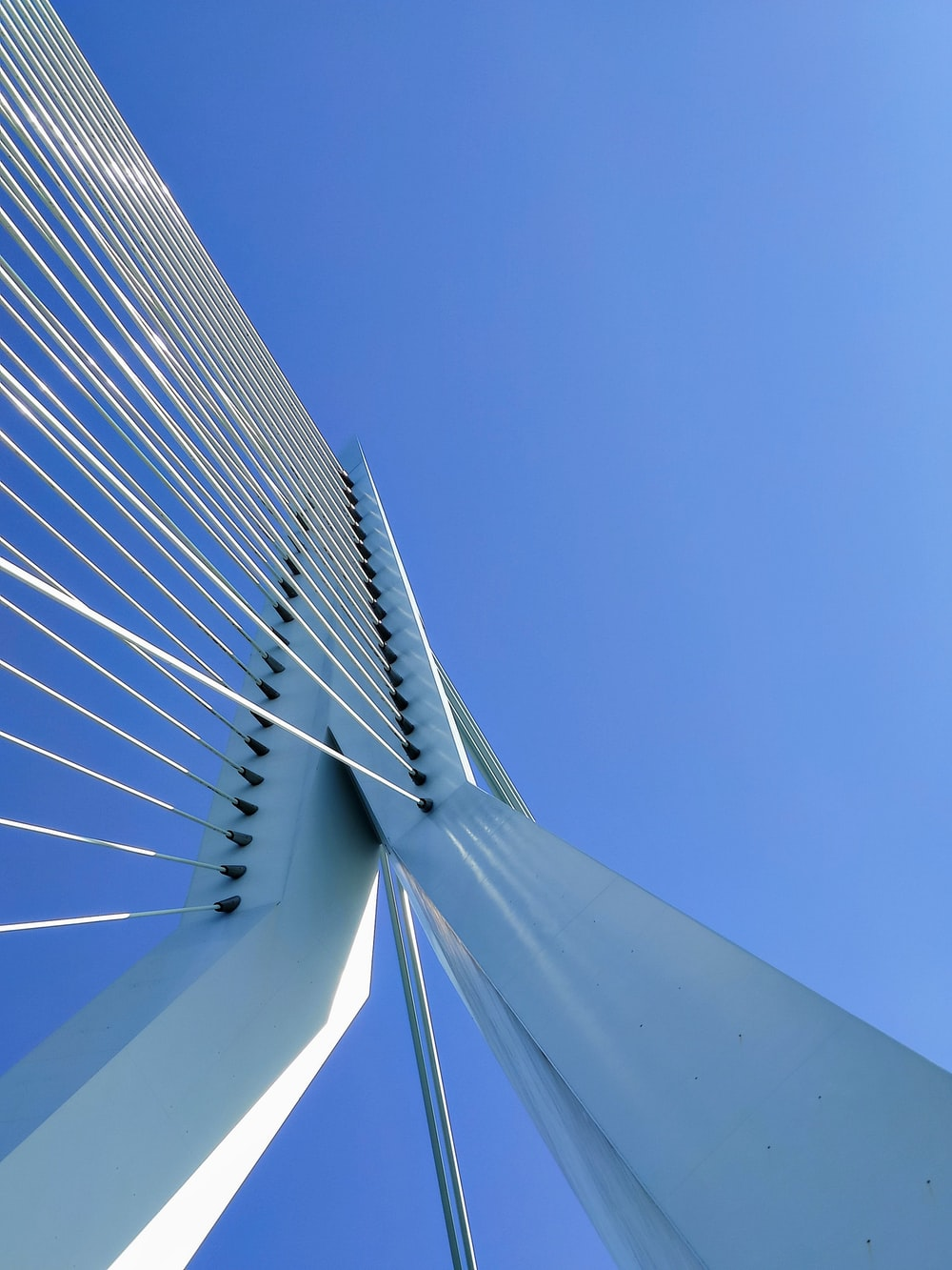 gray cable-stayed bridge during daytime