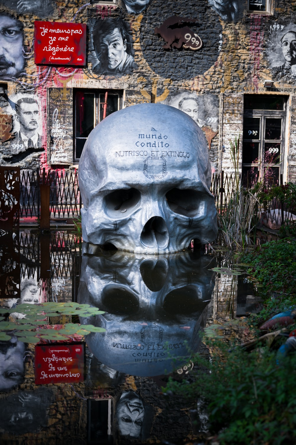 human skull statue reflection on body of water