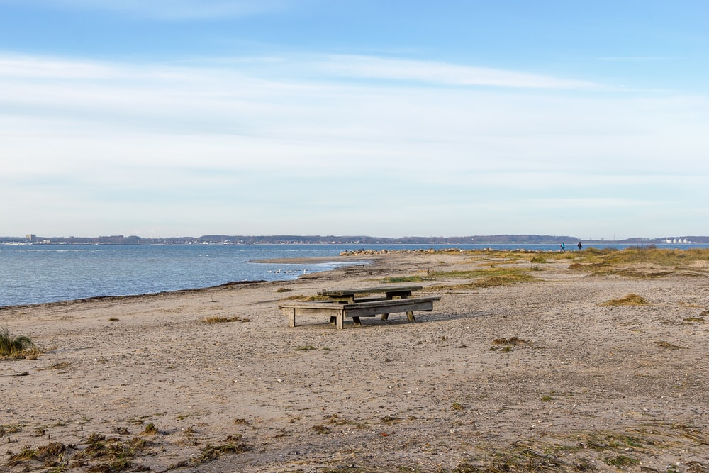 gray wooden picnic table on seashore during daytime