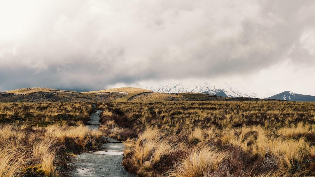 Tongariro National Park, New Zealand (2019)
