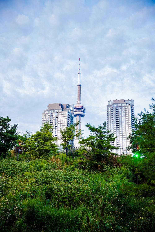 white tower beside trees