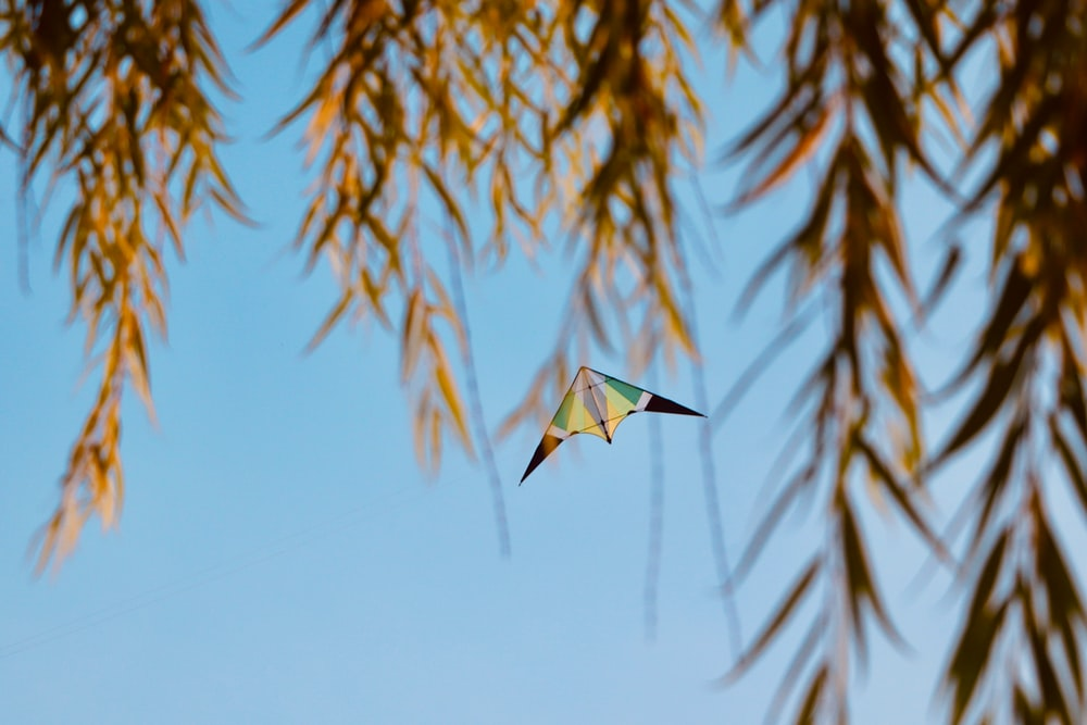 yellow and green kite on mid air