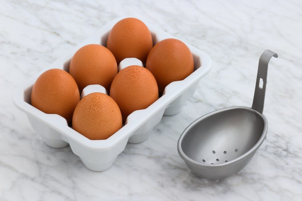 tray of poultry eggs