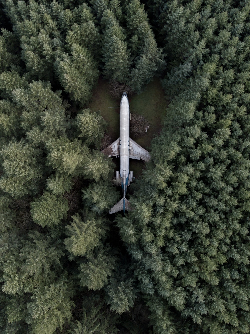 aerial photography of gray airplane